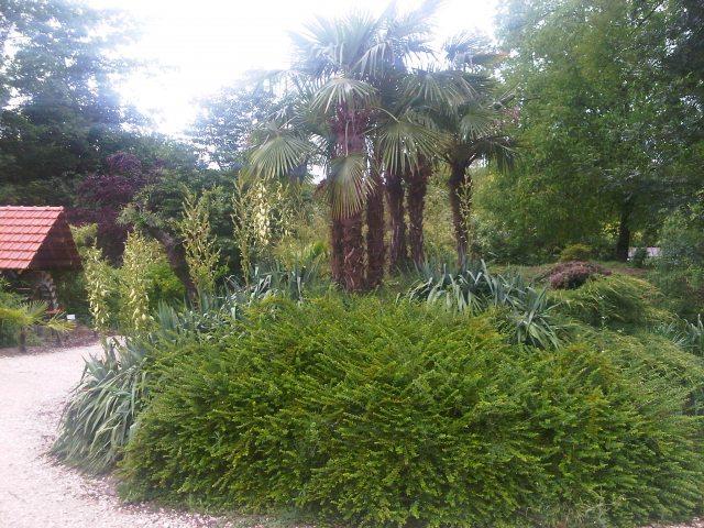 Espace vert travaux forestiers belley for Espace vert toulon